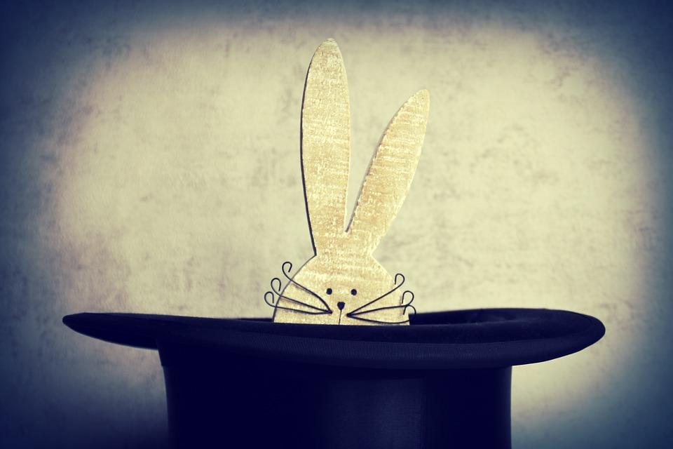 hare-4103102_960_720