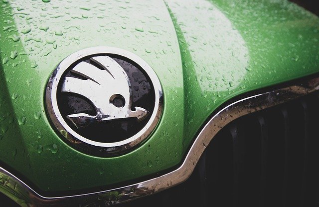 Logo na autě