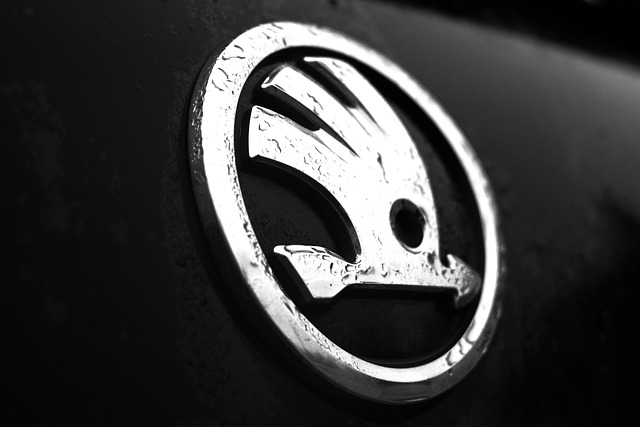 Logo Auto Škoda